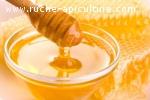 Vente de miel 100% pur